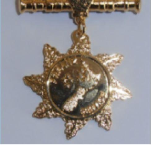 Service Honours>